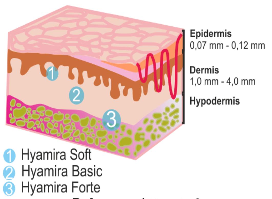 traitement de l'épiderme, du derme, et l'hypoderme hyamira
